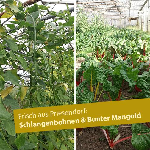 Frisch aus Priesendorf
